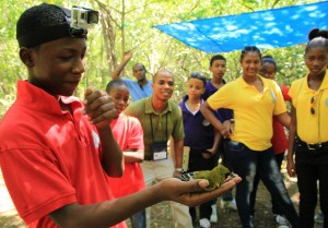 Belmont Academy student releases a banded Jamaican Oriole back into the forest of Font Hill Nature Reserve, St. Elizabeth. (Photo: BirdsCaribbean/Facebook)