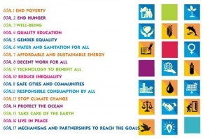The seventeen UN Sustainable Development Goals.