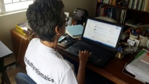 Jamaica Environment Trust CEO Diana McCaulay participating in the recent GraceKennedy tweet chat. (Photo: Twitter)