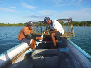 Monitoring fish in Galleon, fish sanctuary, St. Elizabeth. It was designated in 2009, and covers 2.5km2 of ocean with mangroves, seagrass and coral reef present. (Photo: CARIBSAVE)
