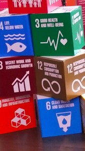 Building blocks: Some of the 17 Sustainable Development Goals. (My photo)