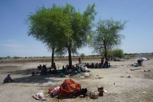 Internally displaced people based in Aburoc take shelter under a tree. When people arrived from Kodok, few had shelter. (Photo: Medicins Sans Frontieres)