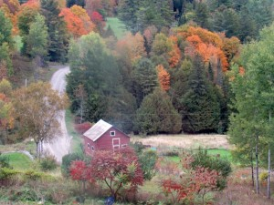 A view from our window in Vermont. It is a beautiful, peaceful state. (My photo)