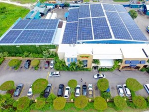 Rainforest Seafoods' solar panels in Montego Bay.