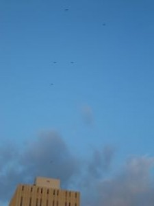 Frigate birds soar above the Bank of Jamaica building downtown. (My photo)